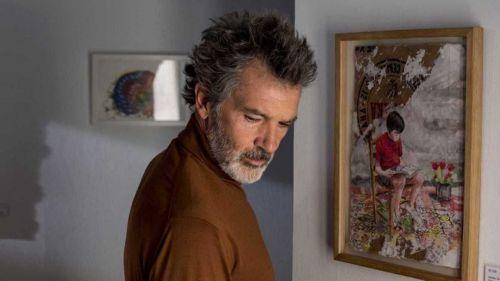 'Dolor y Gloria' consigue cuatro nominaciones a los Premios del Cine Europeo 2019