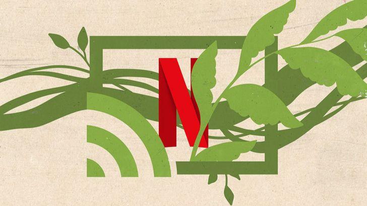 ¿Cuál es el impacto medioambiental del streaming?